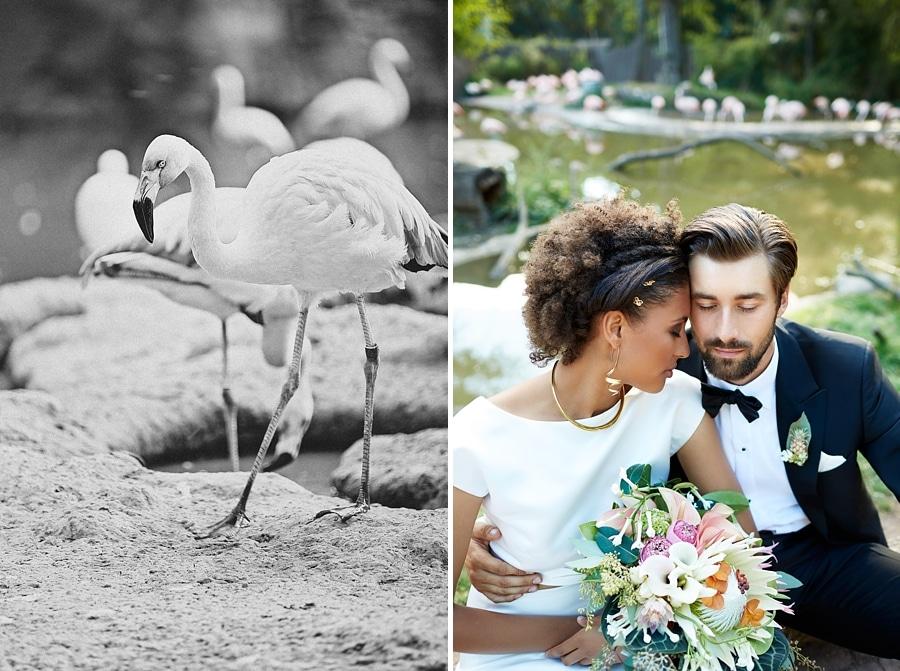 Ein Flamingo und ein Brautpaar