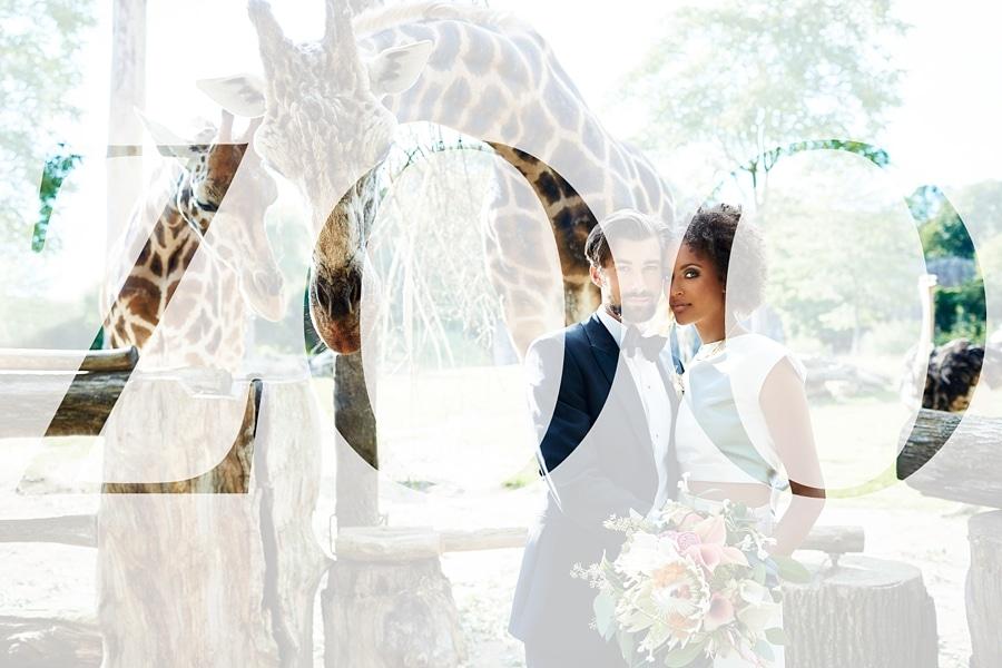 Ein Hochzeitsfoto mit dem Schriftzug Zoo