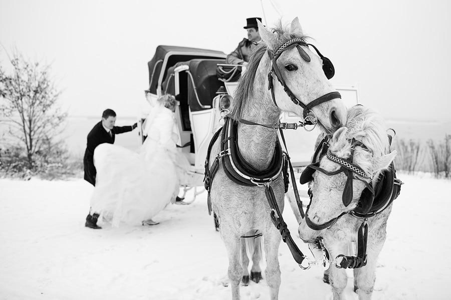 Winterhochzeit-Fotograf-Hochzeit-Leipzig-Pferdekutsche