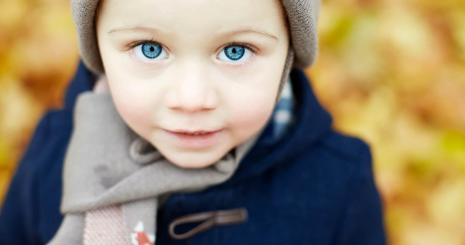 Ein kleiner Junge mit blauen Augen im Herbst